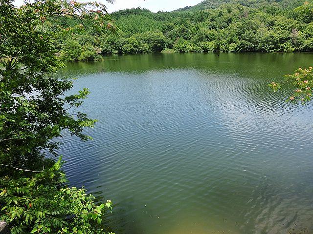 香川県 野池