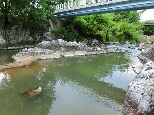 香川 県 バス 釣り