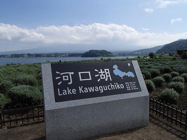 河口湖自然生活館