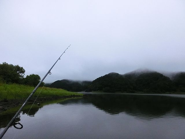 河口湖 バス釣り