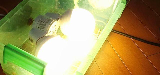 アウトドア用照明機器