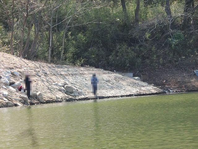 フィッシングパーク竜華池