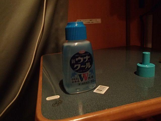 キャンピングカー 蚊
